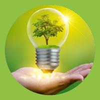Unsere Umweltleitlinien